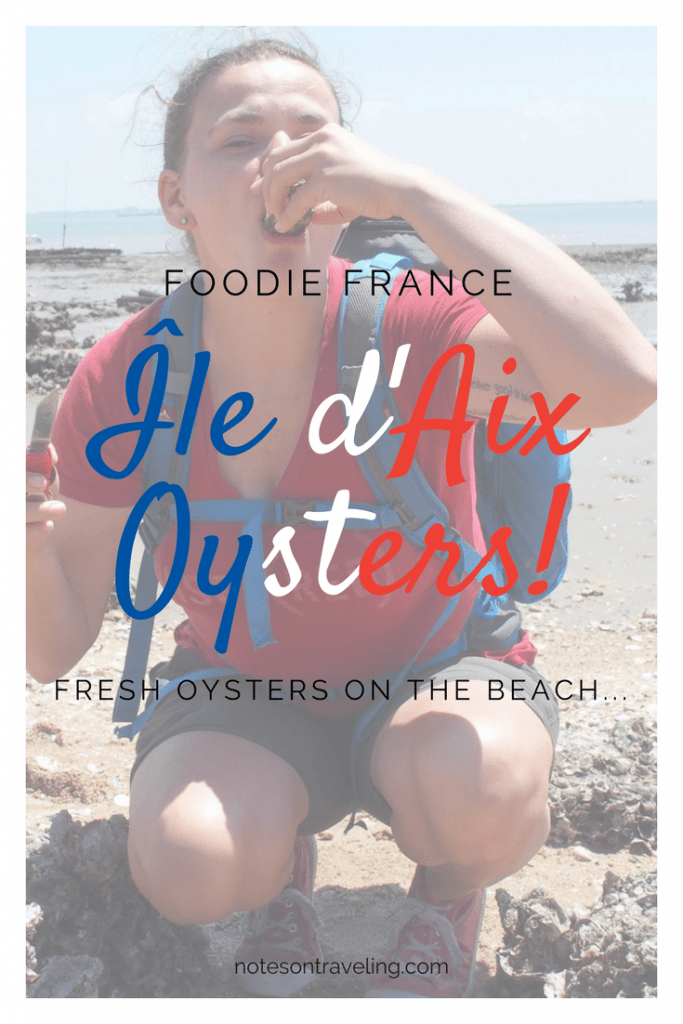 Ile d'Aix oysters are wild oysters growing at the beach of this French island near Île de Rè and Oléron. Go check them out!