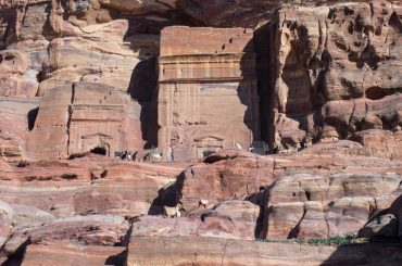 Your 1-stop guide to visiting Petra, Jordan