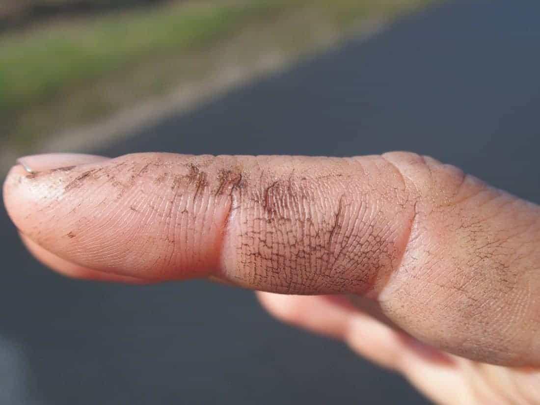 Wine harvest working finger, France (2014-10-11)