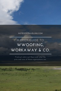 A brief overview of the main contenders in the work & travel aka work for food and lodging market. Incl. WorkAway, HelpX, WWOOF, and more.