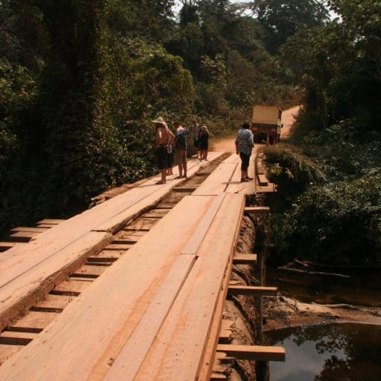Shady wooden bridge, Cameroon (2012-01)