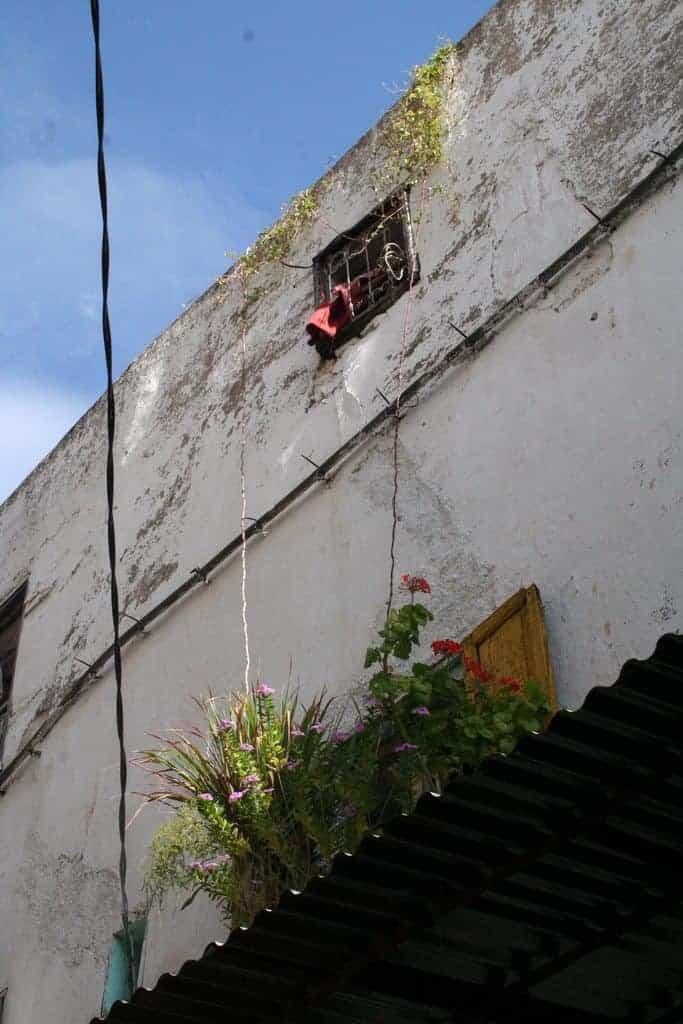 Window in the medina, Fes, Morocco (2011-10)