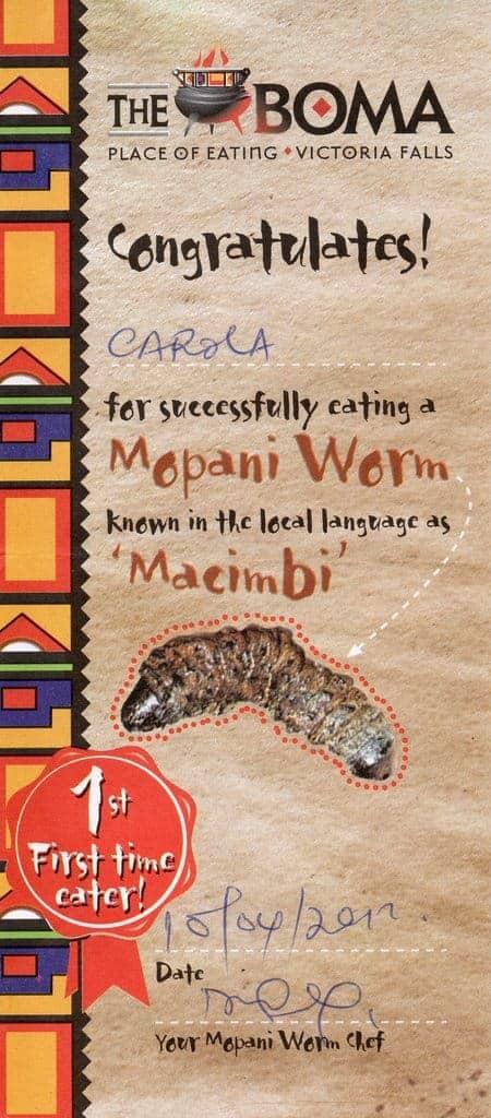 Mopani worm eating certificate, Victoria Falls, Zimbabwe (2012-04)