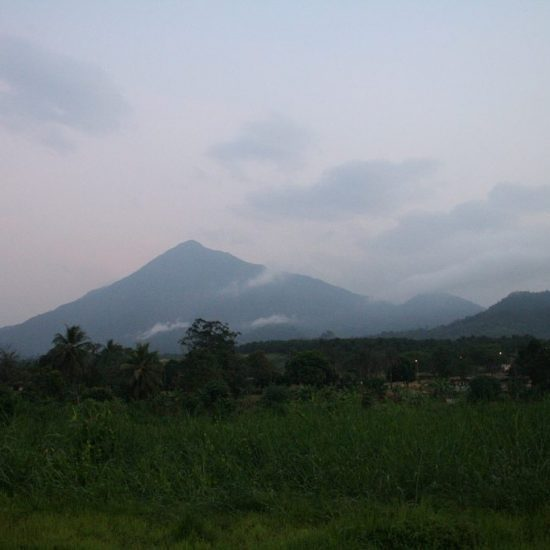 Looking at Mount Cameroon (day 1) (2012-01)