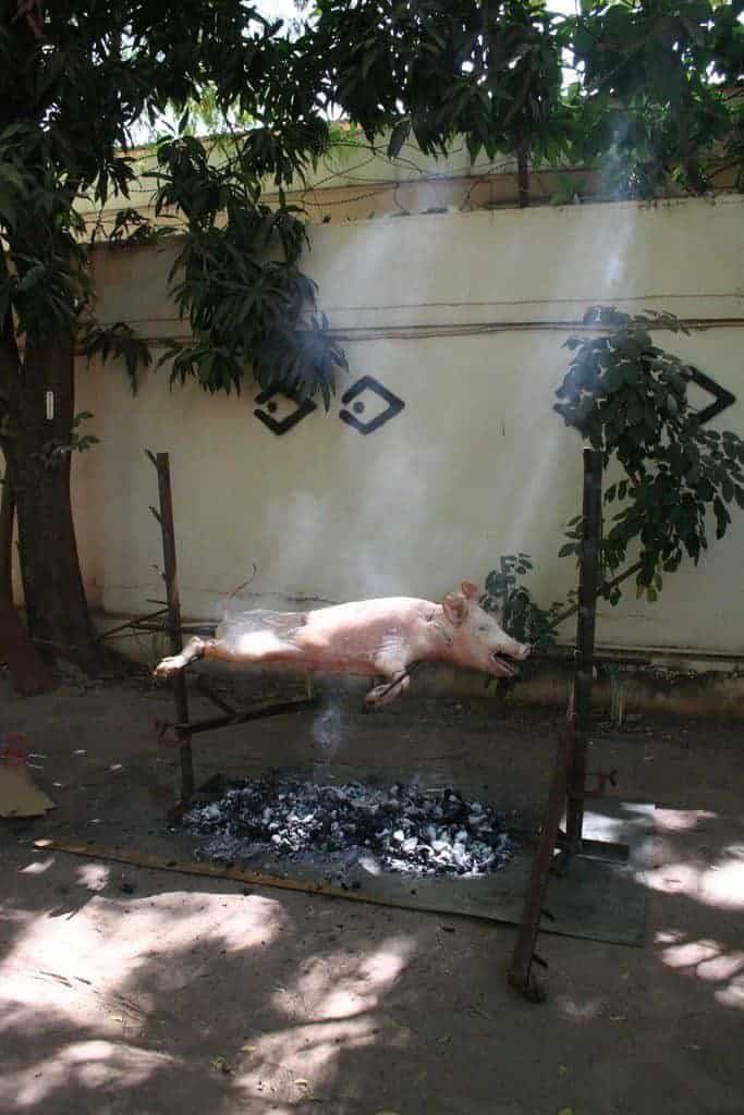 Spit roasting a pig at the Sleeping Camel hostel Bamako, Mali (2011-11)