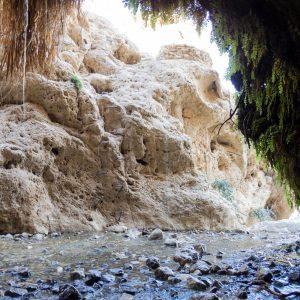 Dodim cave, Ein Gedi Nature Reserve, Israel (2017-01-04)