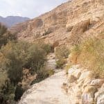 Red path along Arugot Valley, Ein Gedi Nature Reserve, Israel (2017-01-04)
