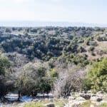 Big Gupt crater, Odem forest, Golan Heights, Israel (2017-01-29)