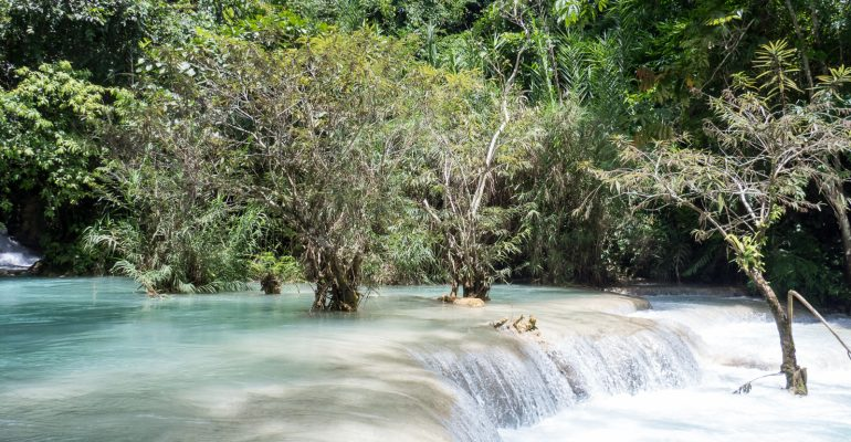 Luang Prabang's Kuang Si Falls: Bears, Butterflies & Turquoise Waters