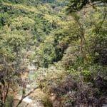 View from the top of Kuang Si Waterfall, Luang Prabang, Laos (2017-08)