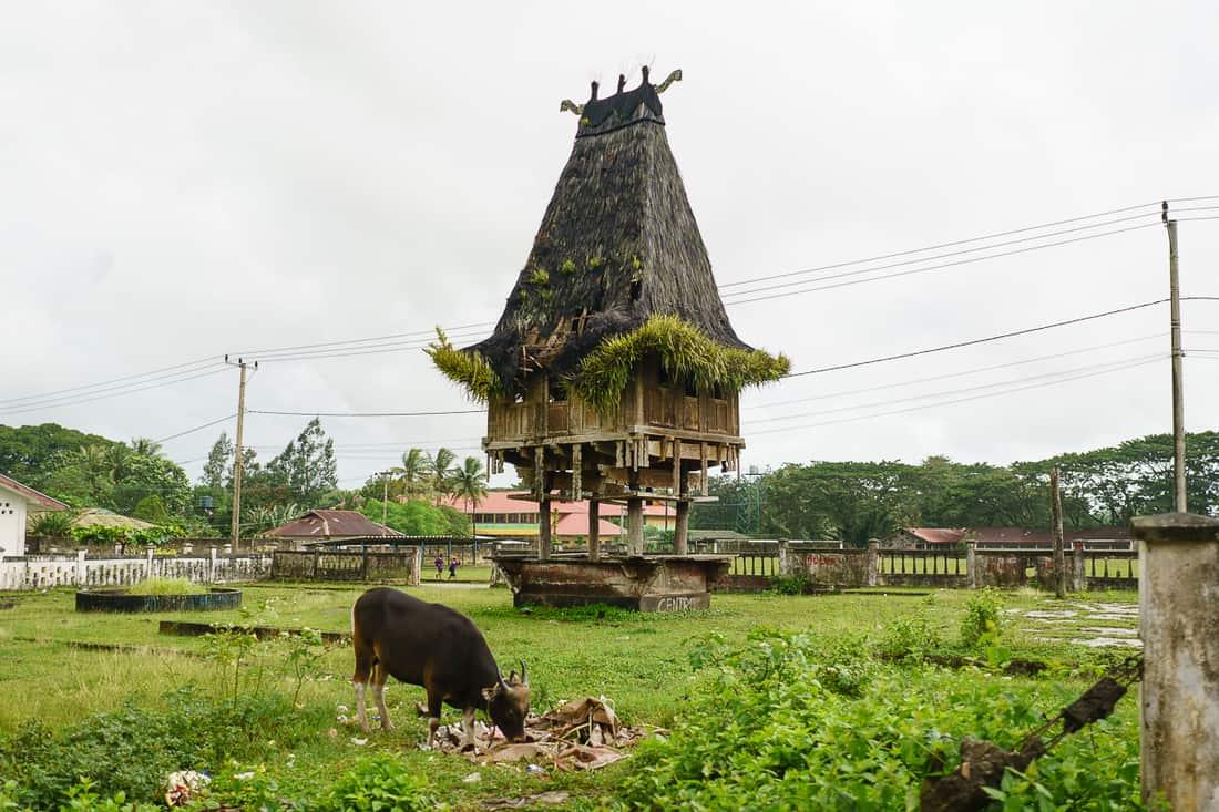 Lospalos tradisional stilted house, East Timor