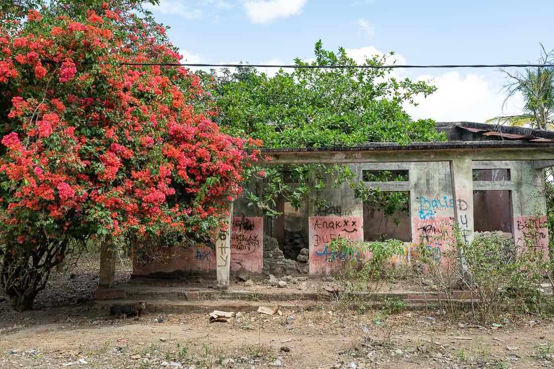 Ruin, Balibo, East Timor